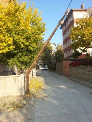 foto-033.jpg